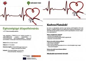 Egészségügyi-állapotfelmérés-2013.-november-19.